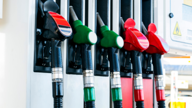 Petrol and diesel prices remain stable, know what are the prices in 4 metros