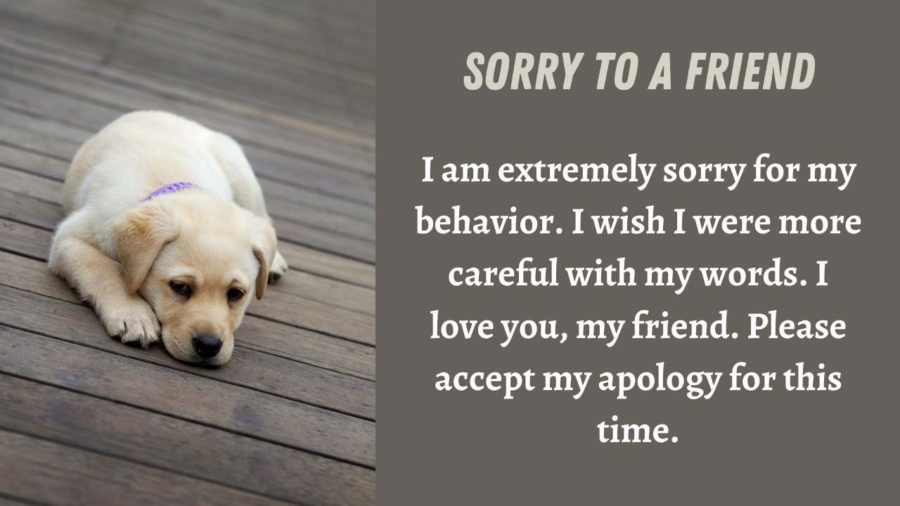 Sorry Messages for Friend