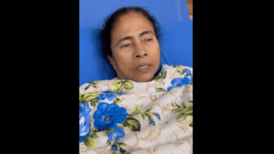 West Bengal assembly election 2021: Mamata Banerjee: Mamata Banerjee refuses to lose, will campaign in a wheelchair