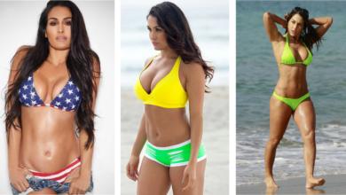 Nikki Bella Hot and Sexy Photos or Images: Top Bold and Bikini pics of Nikki Bella