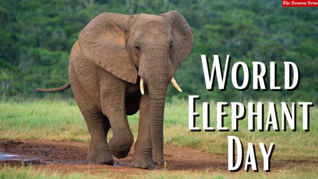 World Elephant Day 2021